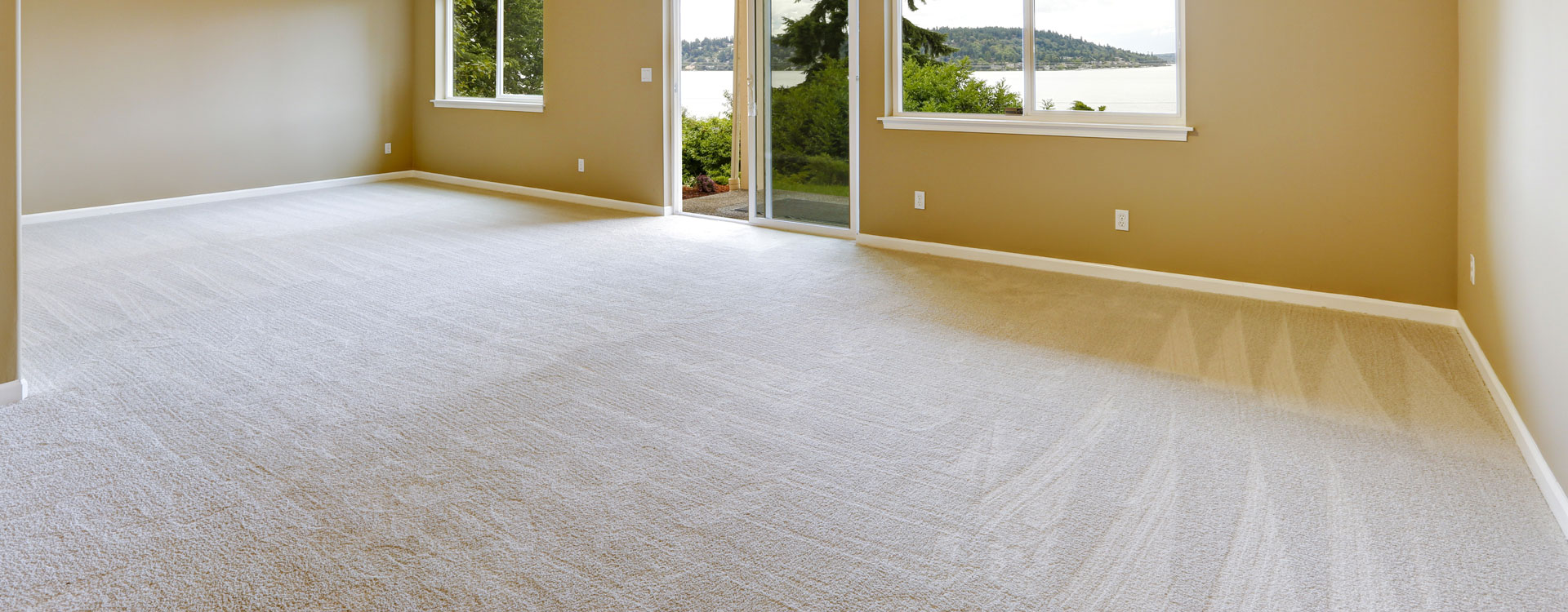 residential-carpet-cleaning-company-nh